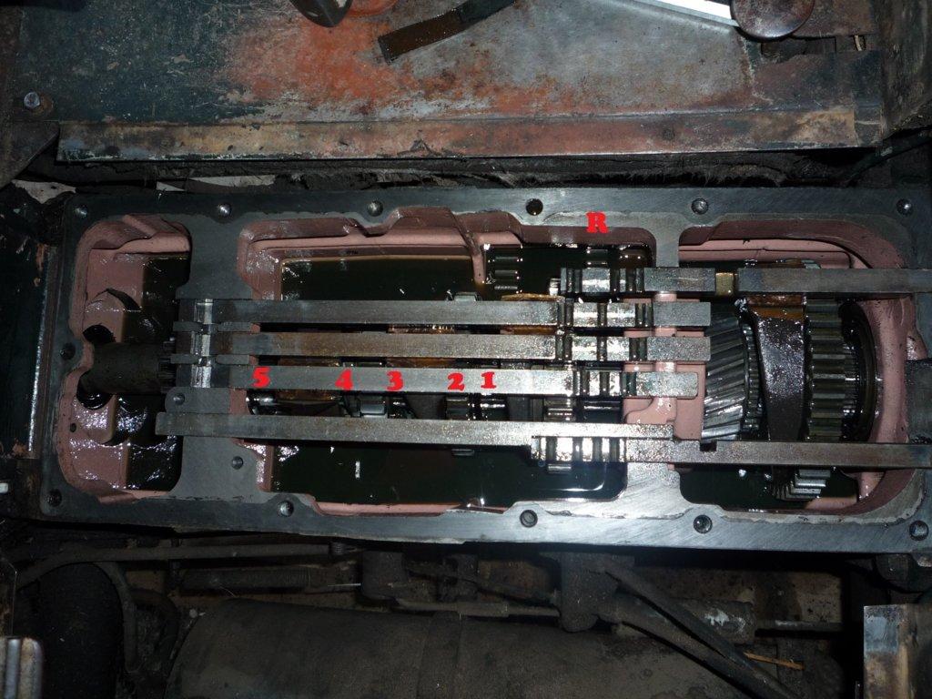 P1010544 - Kopie.JPG